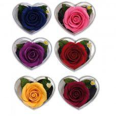 Rosa de jabón en cajita corazón