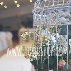 Alquiler de jaulas para bodas