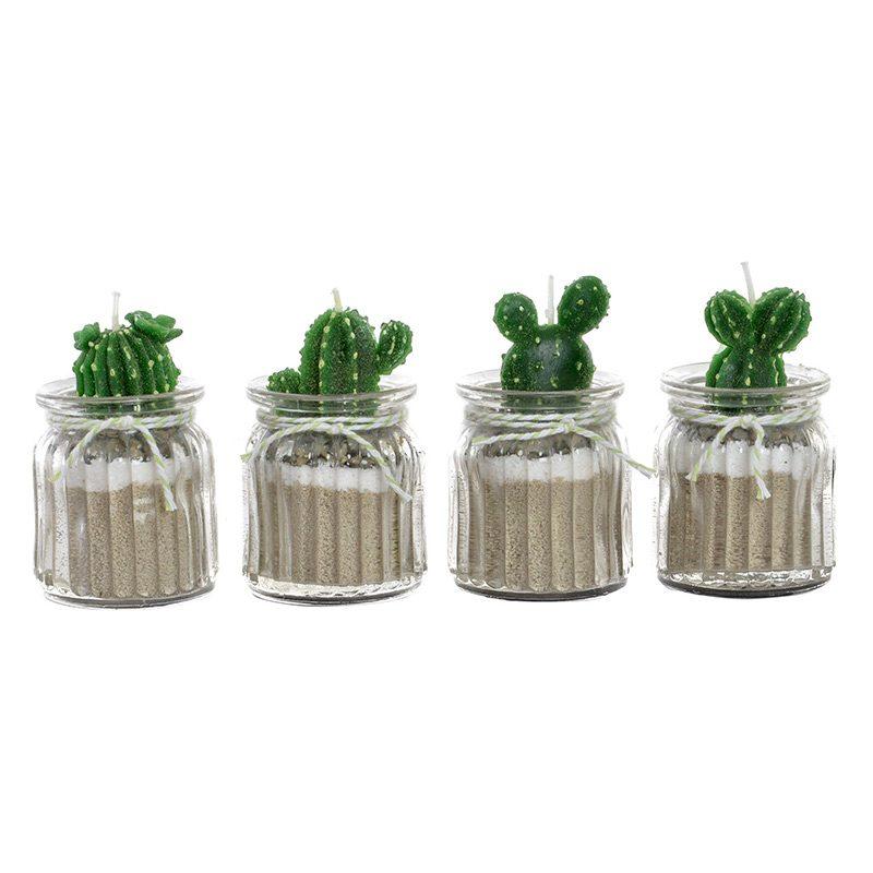 Vela en macetero de cristal. Cacti nature. 4 modelos. 6x10cm